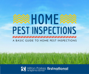 Home Pest Inspections: A Basic Guide to Home Pest Inspections