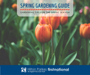 Spring Gardening Guide - Gardening Tips for the Spring Season